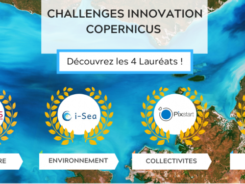 Copernicus Challenges Winners